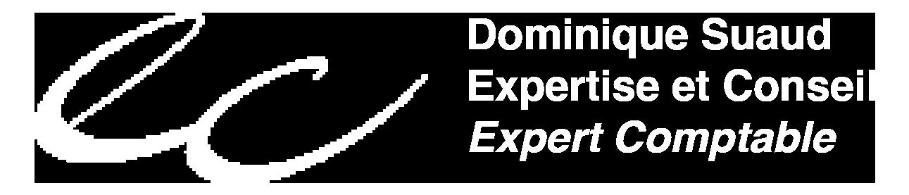 dsuaud-expertcomptable